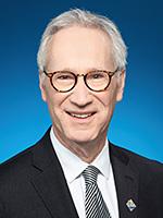 David Birnbaum, Député